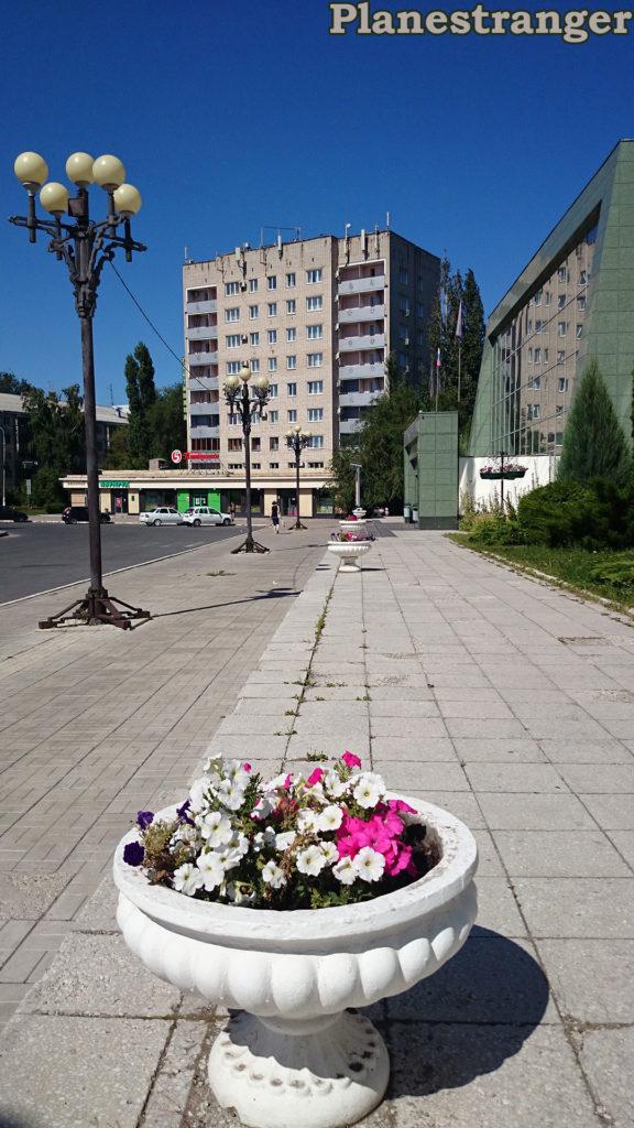 flowers lamps togliatti pobedy street